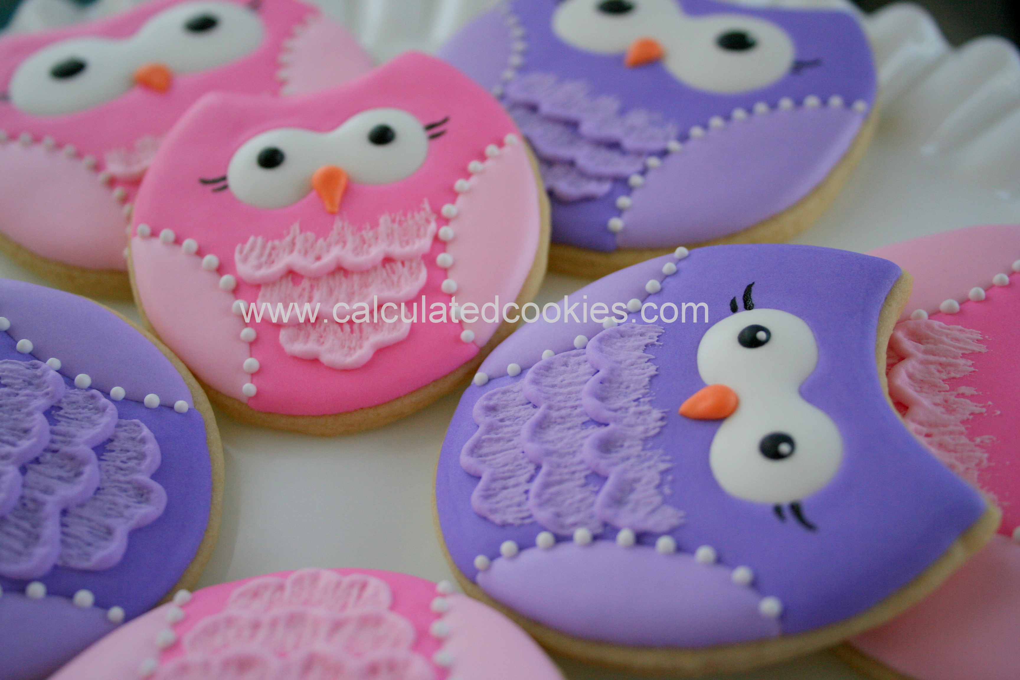 Owl Decorated Cookies 1st Birthday Owl Cookies Calculated Cookiescalculated Cookies